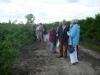 17-heemreis-limburg-9-juni-2012-blauwe-bessenkwekerij