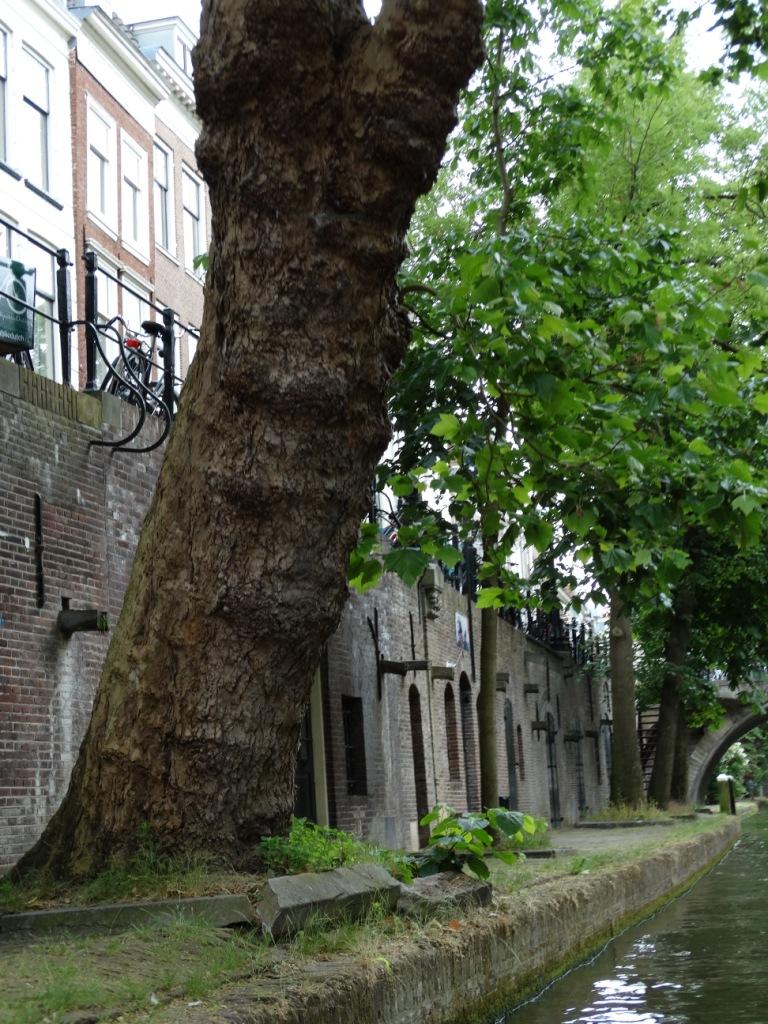 25 Heemreis Utrecht rondvaart
